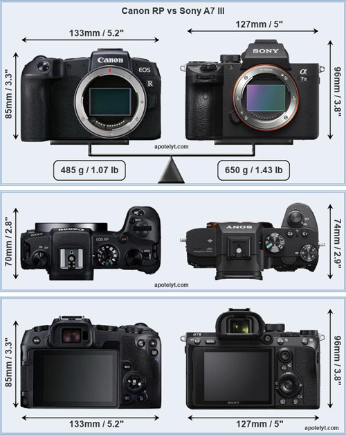 size_comp_canoneosrp_vs_sony_a7iii_001.jpg